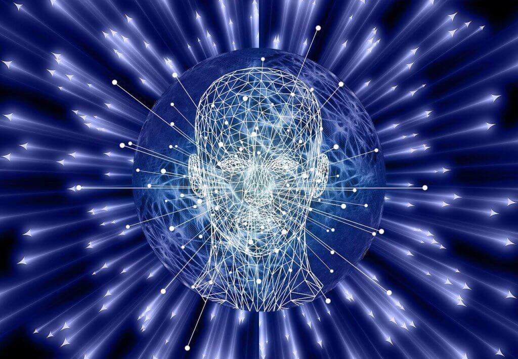 Gehirn Intuition